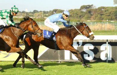 Third feature win for Boland Stud's Pocket Rocket