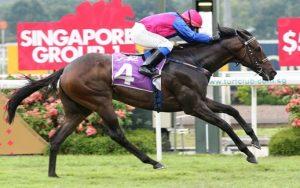 Flax – Gr.1 winner in Singapore