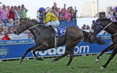 Chic yearling on offer from Boland