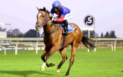 Million winner's ½ sister a must see