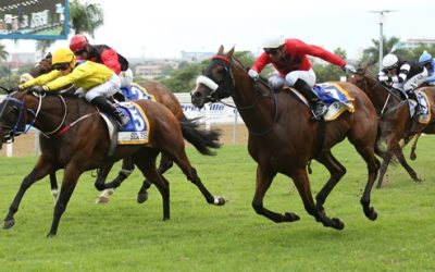 Boland Stud bred gelding wins King's Cup