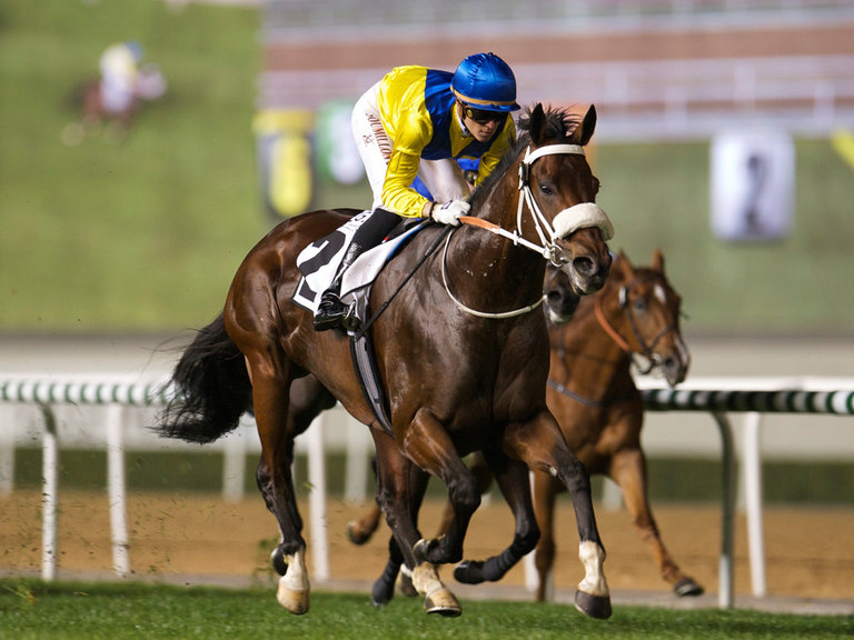 Singapore star sibling to star at National Sale