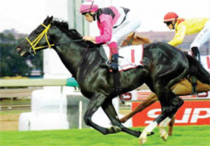 Boland Stud - Sales - BloodStock 2020 - Surcharge